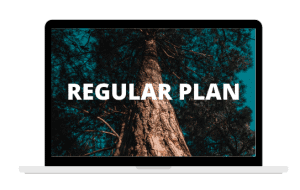 Regular Plan